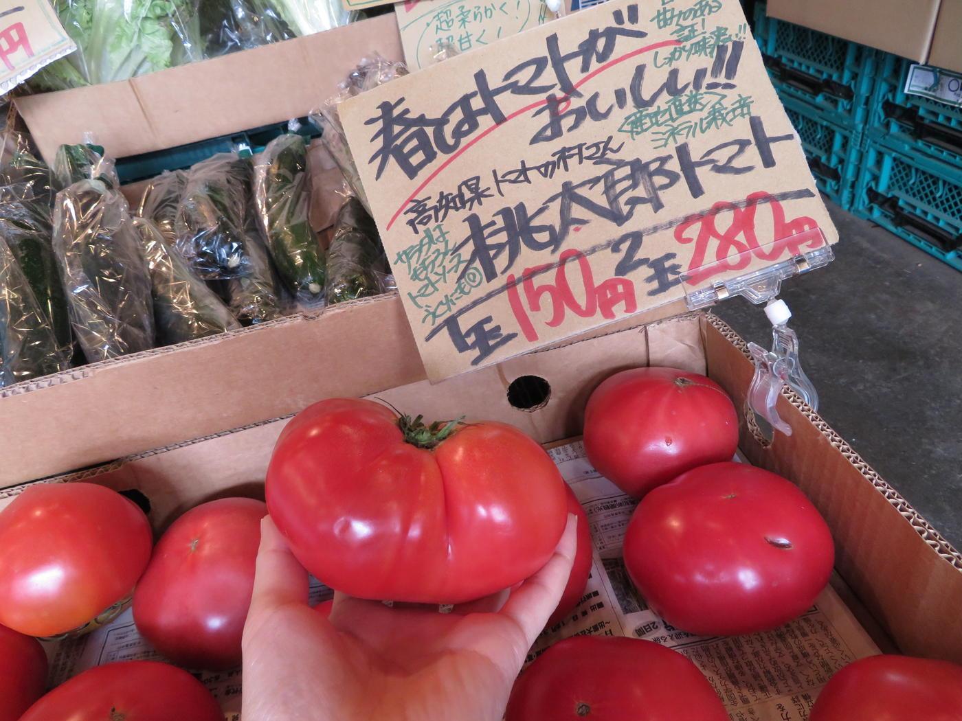 旬八青果店-トマト